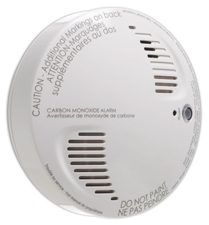 Wireless CO Detector WS4913